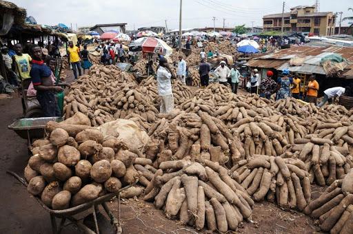 Zaki Biam Yam Market, Makurdi, Benue State, Nigeria.